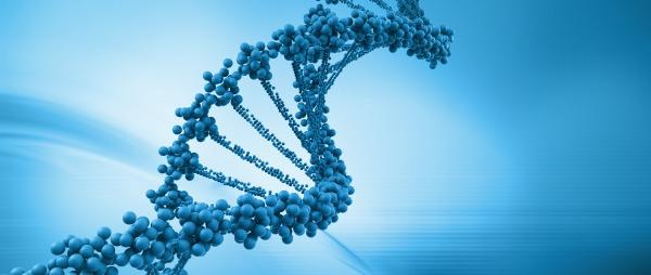 Epigenética y la Modulación del ADN
