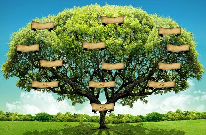 arbol psicogenealogia