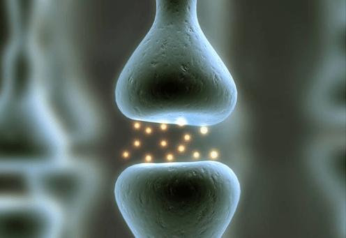 Este es un Neurotransmisor