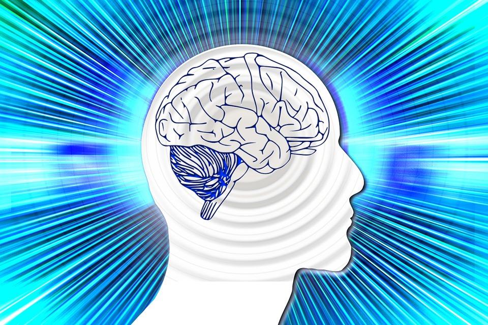 Conoce tus Ondas Cerebrales: Alpha, Beta, Theta, Delta y Gamma